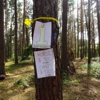summer_time_2015_0465.jpg
