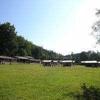 summer_time_2015_0501.jpg